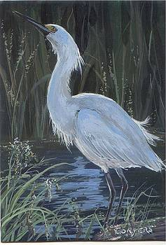 Egret by Peggy Conyers