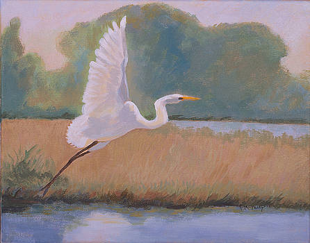 Egret Sutter County, California by Susan McNally