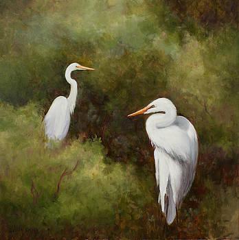 Egrets Roosting by Glenda Cason