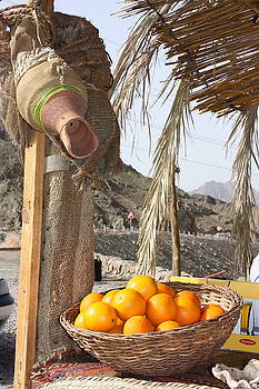 Yvonne Ayoub - Egypt Oranges at the Oasis