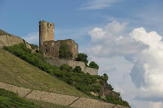 Ehrenfels Castle 06 by Teresa Mucha