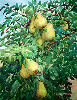 Eight Pears by Peter Sit