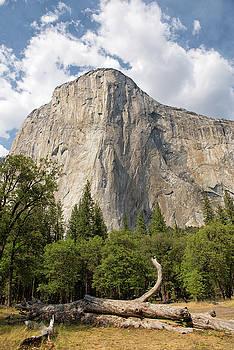 El Capitan - Yosemite National Park - California by Bruce Friedman