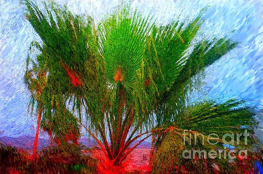 Gerhardt Isringhaus - El Dorado Palm