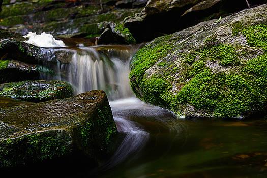 Elakala Falls #10 by Dan Girard