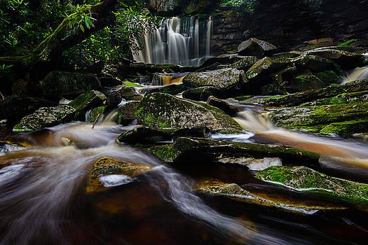 Elakala Falls #3 by Dan Girard