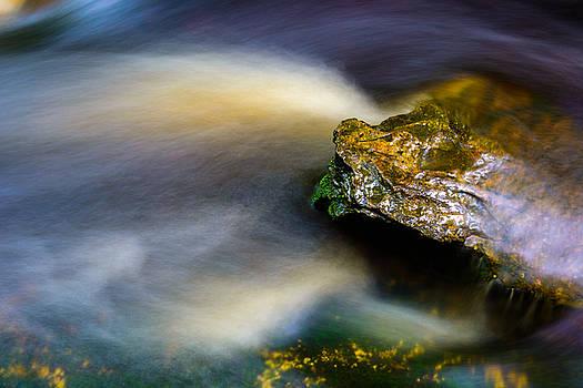 Elakala Falls #7 by Dan Girard