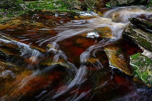 Elakala Falls #8 by Dan Girard