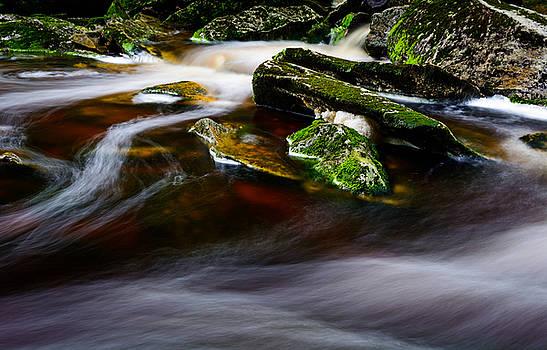 Elakala Falls #9 by Dan Girard