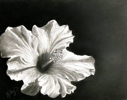 Elegance by Kathy Dolan