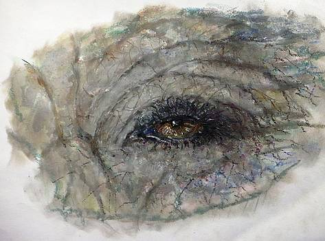 Elephant Eye II by Bernadette Krupa
