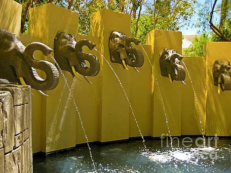 John Malone - Elephant Fountain Two