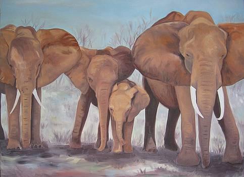 Elephant Herd by Karen Snider