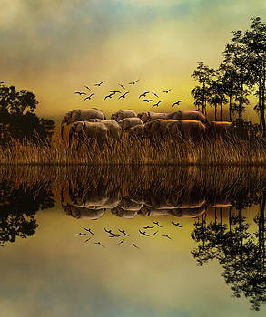Elephants at Sunset by Diane Schuster