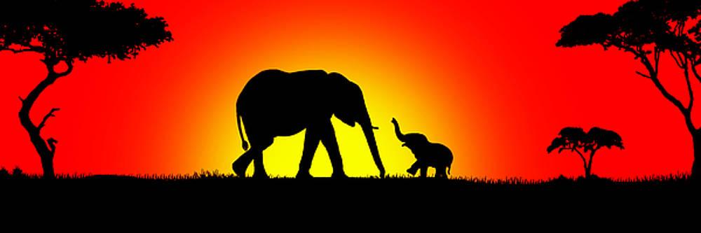 Elephants Playtime by Peter Stevenson