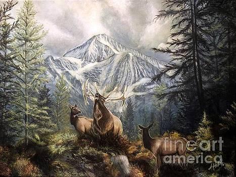 Elk Ridge by Amanda Hukill