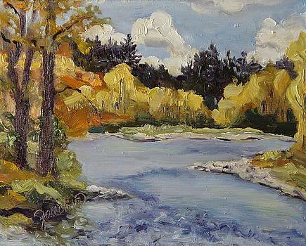 Elk River Fall Steamboat Springs Colorado by Zanobia Shalks