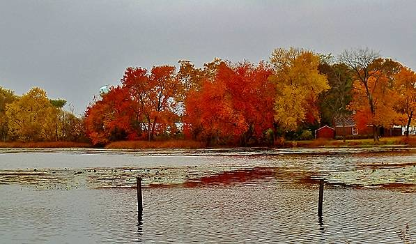 Elmer Lake in Autumn by Ed Sweeney