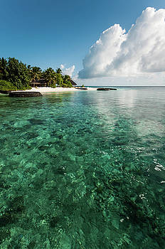Jenny Rainbow - Emerald Water of the Maldivian Coral Reef