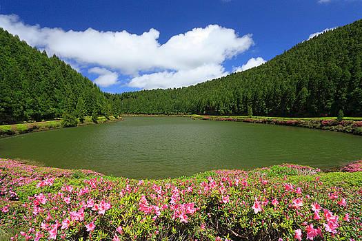 Gaspar Avila - Empadadas Lakes