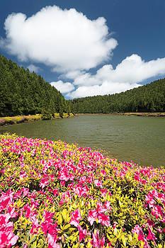 Gaspar Avila - Empadadas Lakes II