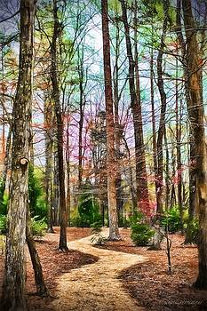 Enchanted Forest Path by Melissa Bittinger
