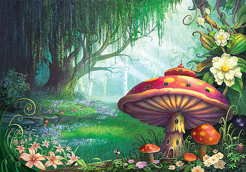 Enchanted Forest by Philip Straub