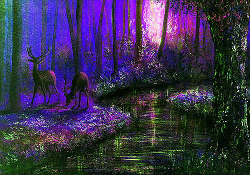 Enchanted Water by Ann Marie Bone