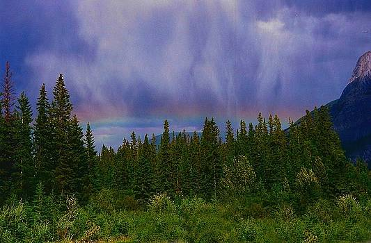 Encountering a Storm by Shirley Sirois