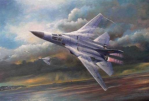 'End of an Era' F111 Qld final flight by Colin Parker