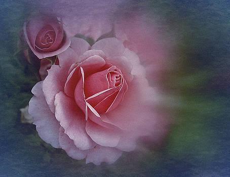 End of July 2016 Roses by Richard Cummings