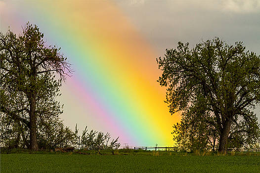 James BO  Insogna - End of the Rainbow Pot Of Gold