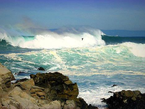 Joyce Dickens - Energies Of The Pacific