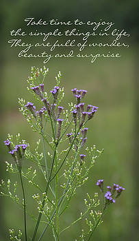 Enjoy the Simple Things Verbena Wildflowers by Kathy Clark