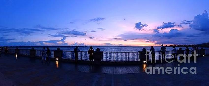 Enjoying the Beautiful Evening Sky by Yali Shi