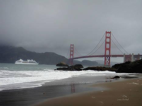 Donna Blackhall - Entering The Golden Gate