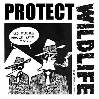 Enviro Ducks by William Krupinski