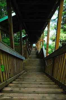 Epic Staircase by Preston Zeller