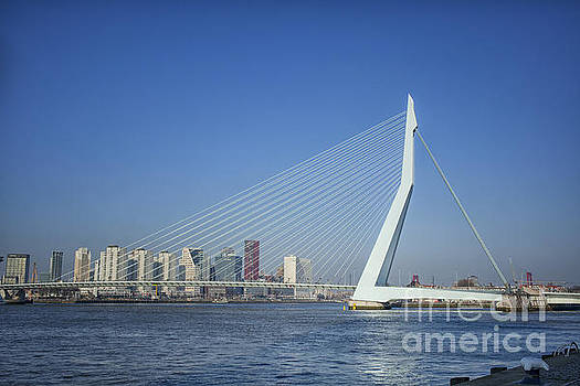 Patricia Hofmeester - Erasmus bridge in Rotterdam the Netherlands, Europe