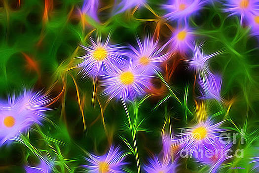 Essence Of Asters by Barbara Milton