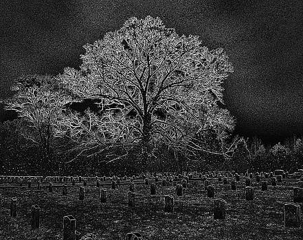 Essence by Troy  Skebo
