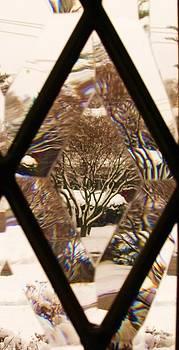 Etched Window View by Anna Villarreal Garbis