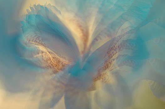 Jenny Rainbow - Ethereal Life 10. Interior Ideas
