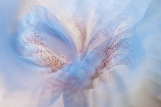 Jenny Rainbow - Ethereal Life 2. Interior Ideas