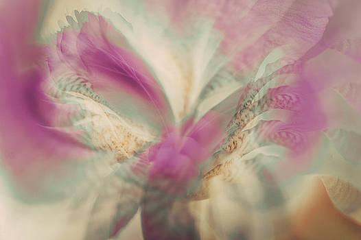 Jenny Rainbow - Ethereal Life 3. Interior Ideas
