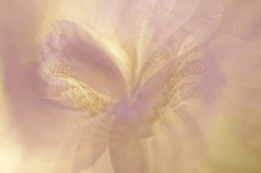Jenny Rainbow - Ethereal Life 8. Interior Ideas