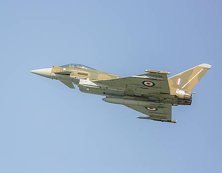 Euro fighter by Roy McPeak