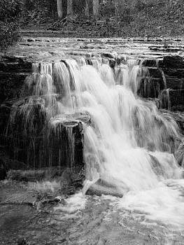 Evanita's Waterfall by Judy Whitton