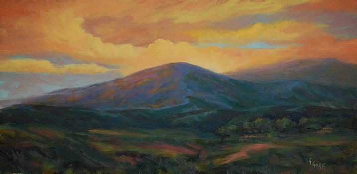 Evening Ablaze by Gary Gore
