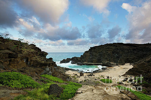 Evening at Halona Cove - Oahu by Charmian Vistaunet